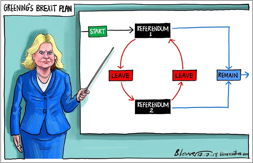 Justine Greening's 2nd referendum plan