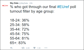 EU Ref sky data turnout-by-age