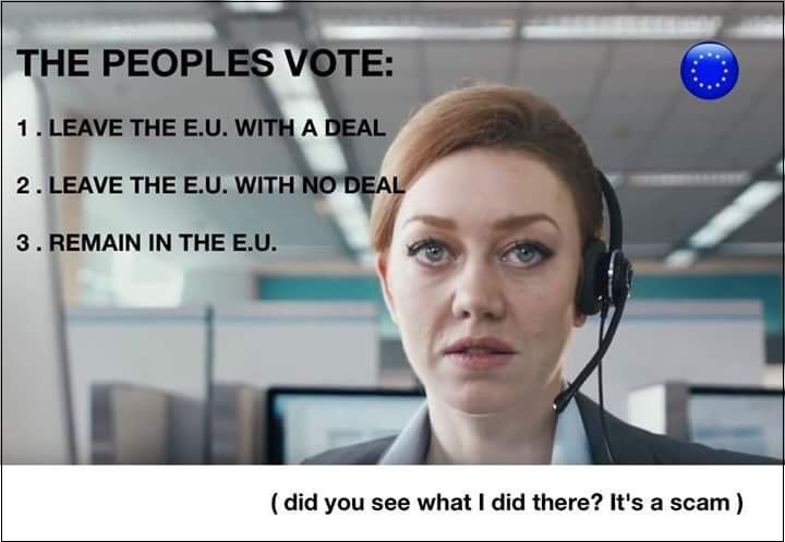 The 'People's Vote' Scam v1